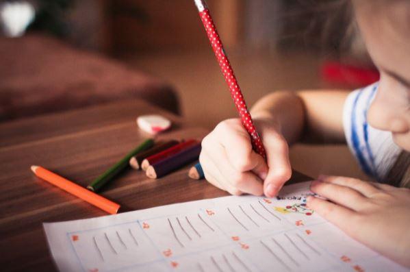educação infantil importancia